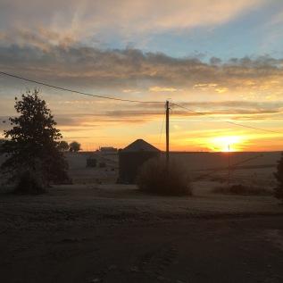 Just outside my door in Iowa